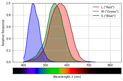 Human L, M and S photoreceptor sensitivities as a function of the wavelength
