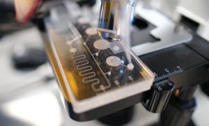 Microfluidic cartridge prototype