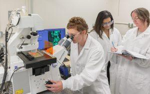 Infectious Disease Diagnostics market potential