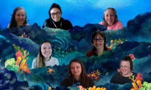working in StarFish