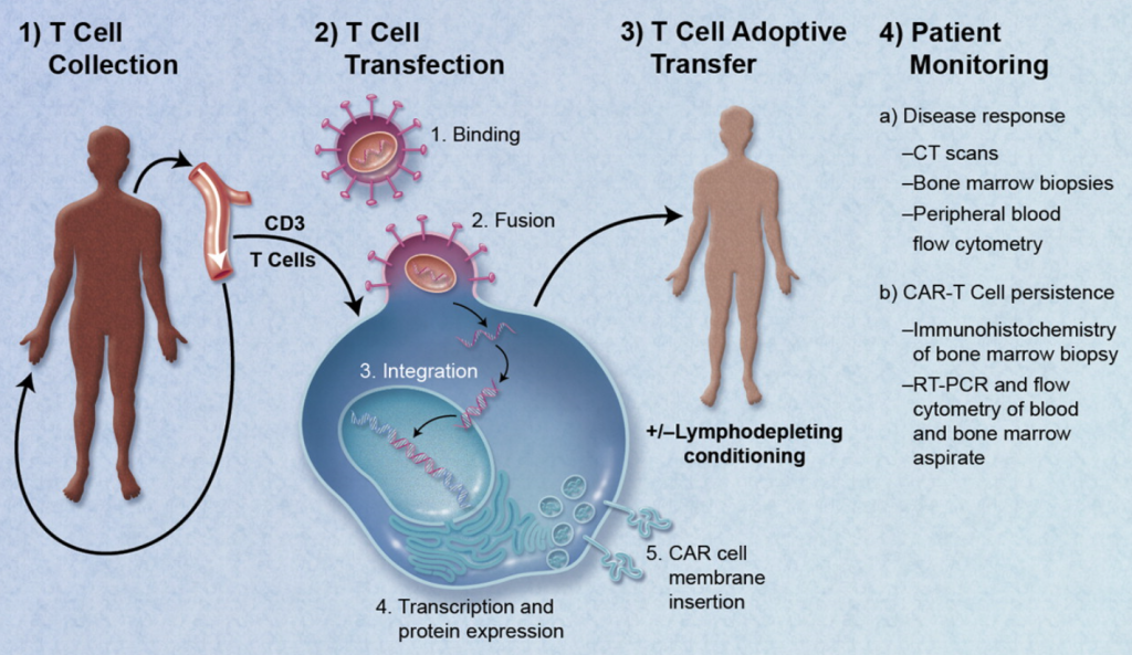 Regenerative Medicine therapeutic medical devices